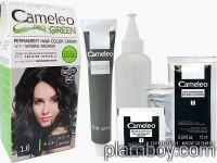 Крем - боя за коса с Аргенин Cameleo Pro-Green - Delia