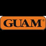 Guam - Италия (34)